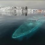 НЛО в Антарктиді
