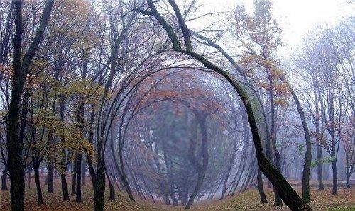 Аномальні місця України