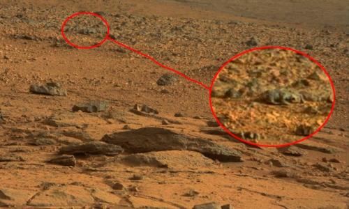 Життя на Марсі фото