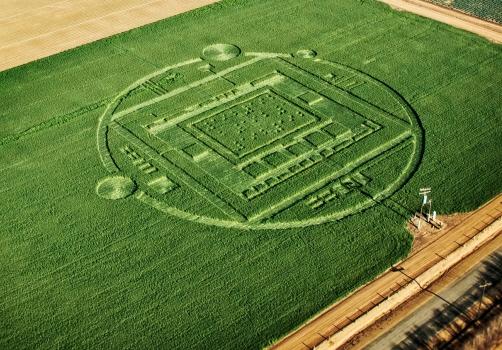 Загадкове коло на полях