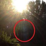 Жінка сфотографувала силует інопланетянина